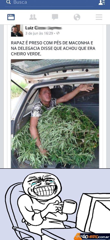 Cheiro verde com selo de qualidade do Snoop Dogg - meme