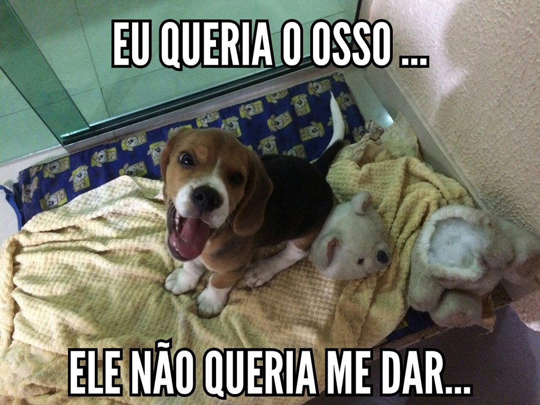 Cachorro do capeta #% - meme