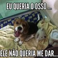 Cachorro do capeta #%