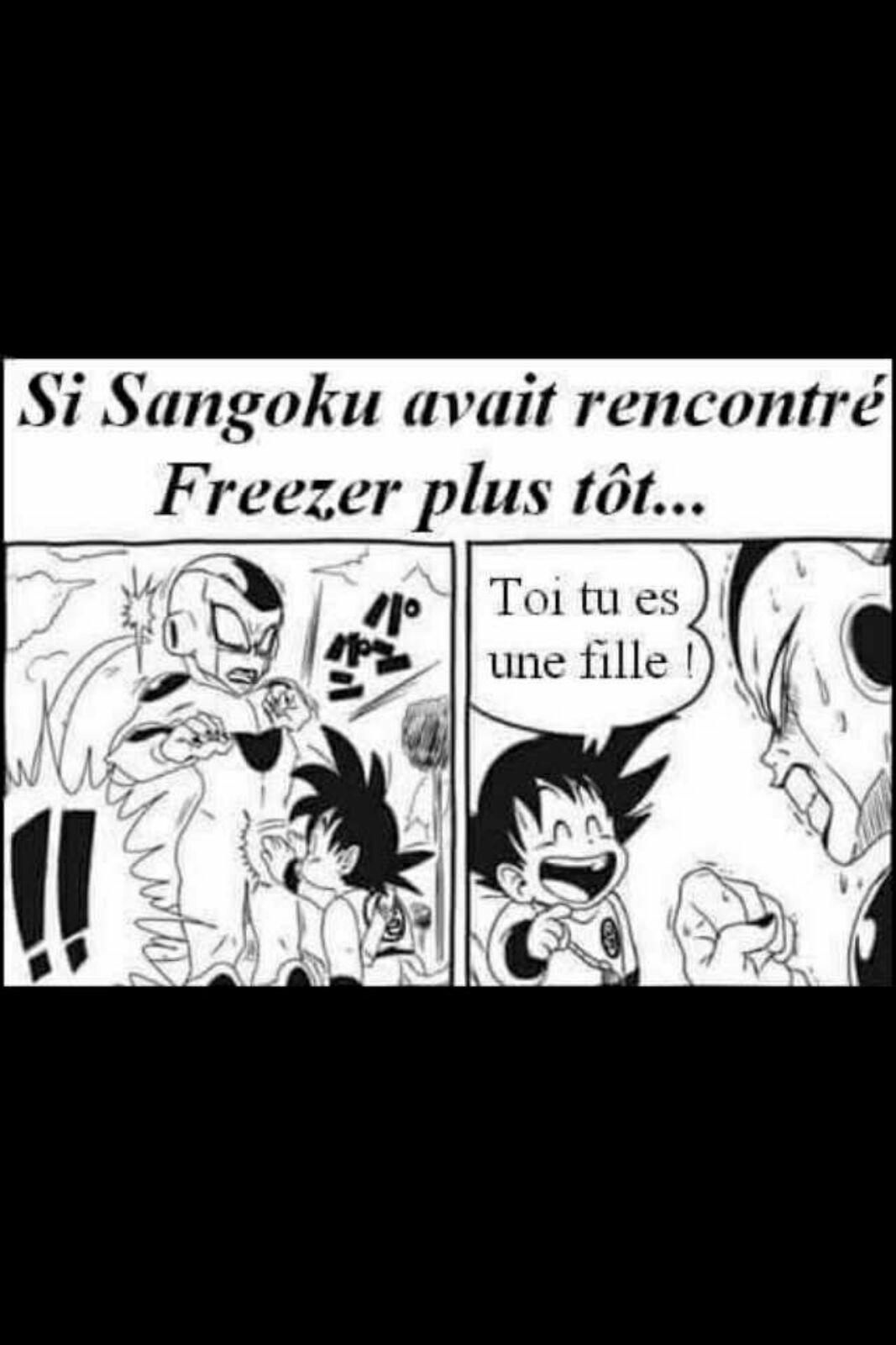 Goku touchait l'entrejambe des gens pour savoir de quel genre ils étaient - meme