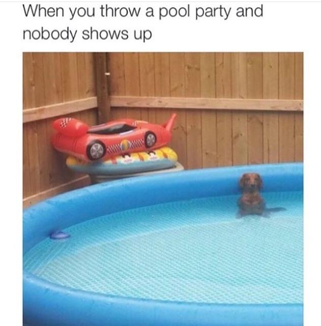 *has no friends* - meme