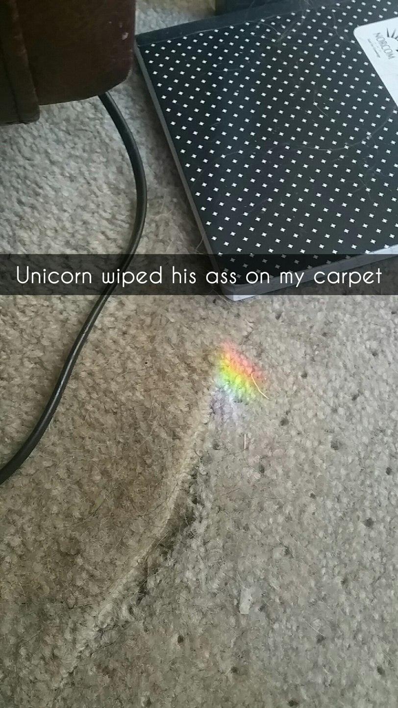 Damn unicorns - meme