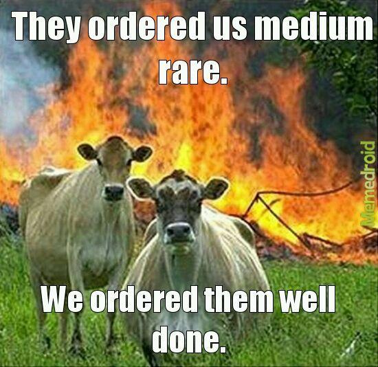 Been a while since I've seen the cows - meme