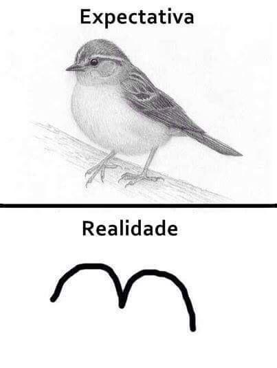 Sempre fazia o passarinho retarda  :( - meme