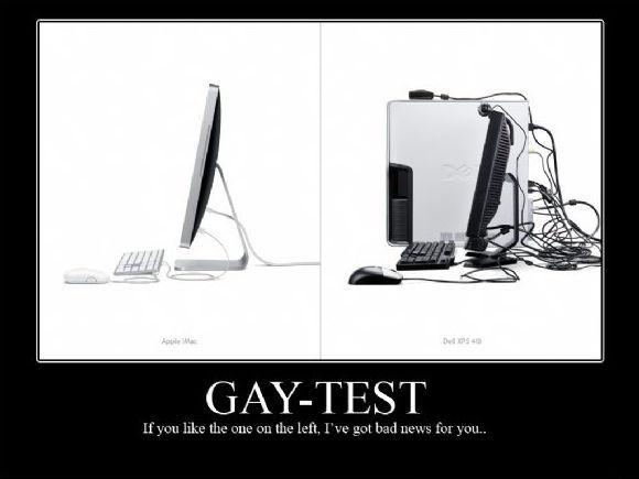 Gay Test - meme