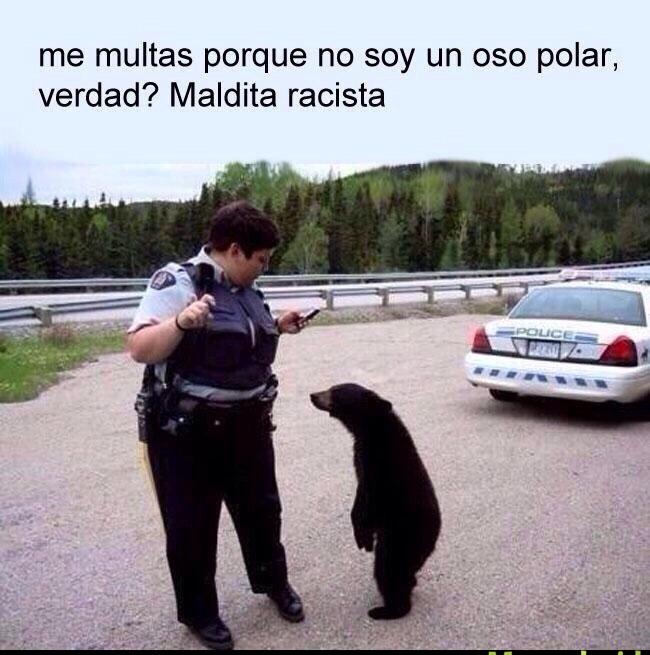 si nunca te multó una policía por no ser un oso polar no tuviste infancia - meme