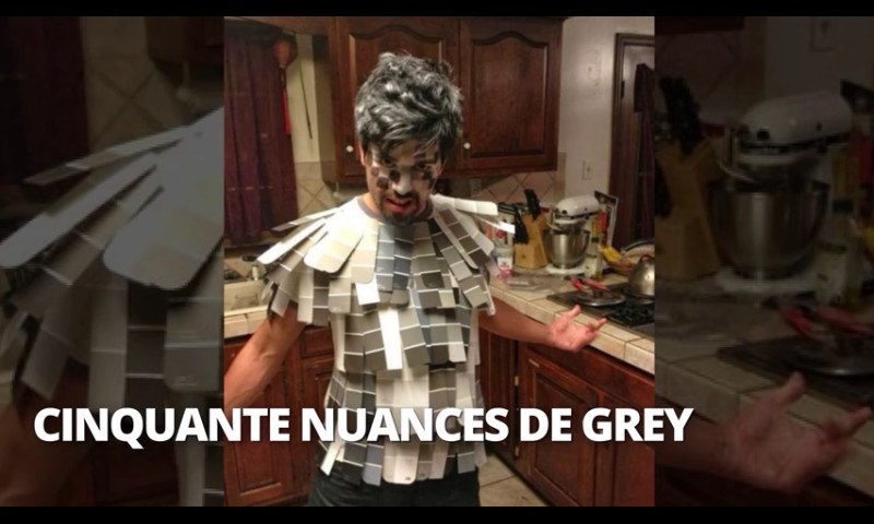50 nuaces de grey - meme