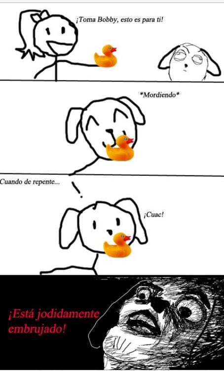 Like si a tu perro le a pasado - meme