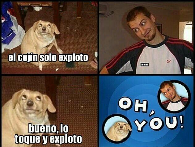 Pinche perro :v - meme