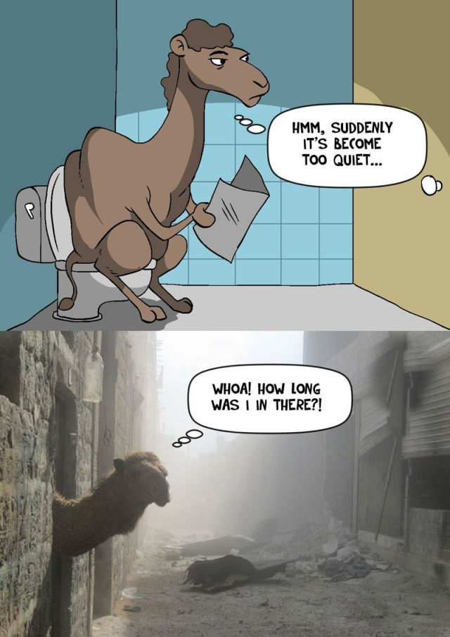 this is how a camel shits - meme