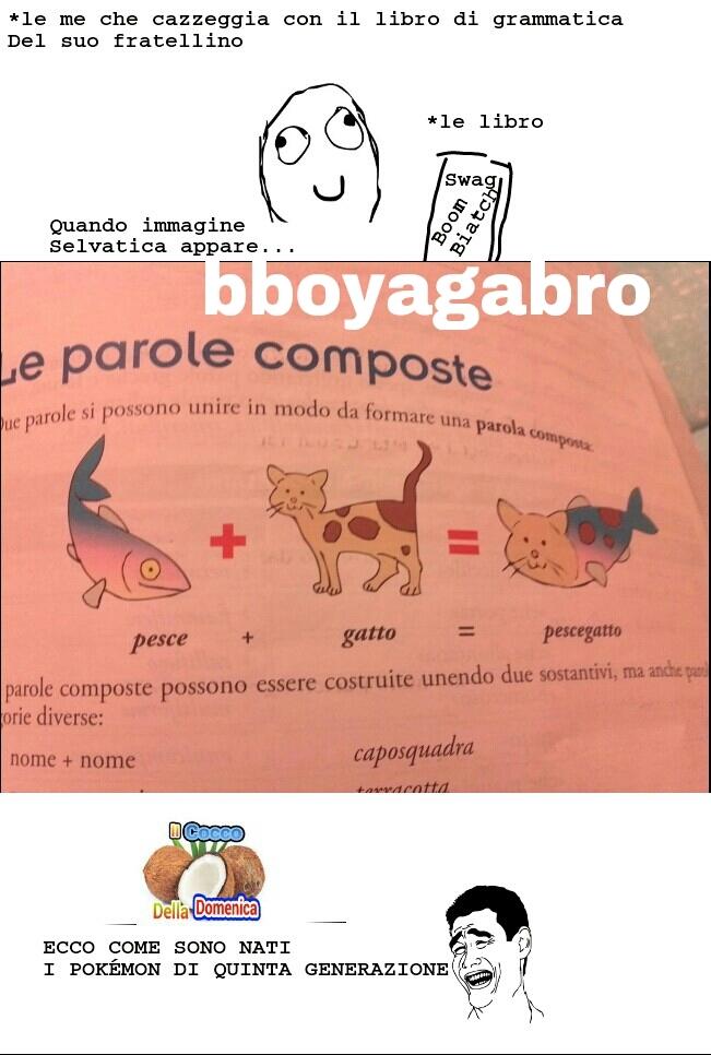 In collaboration con bboyagabro, la firma non é sua, ma il meme é in collaboration, glielo potete chiedere~ cito FlameDragon02