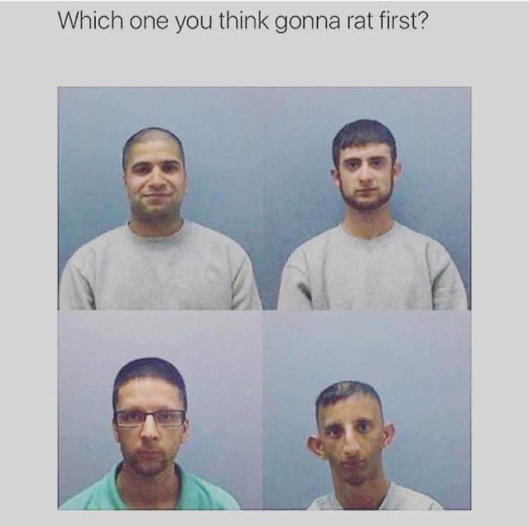Rat bastard! - meme