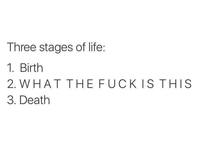 Yea man wtf life? - meme