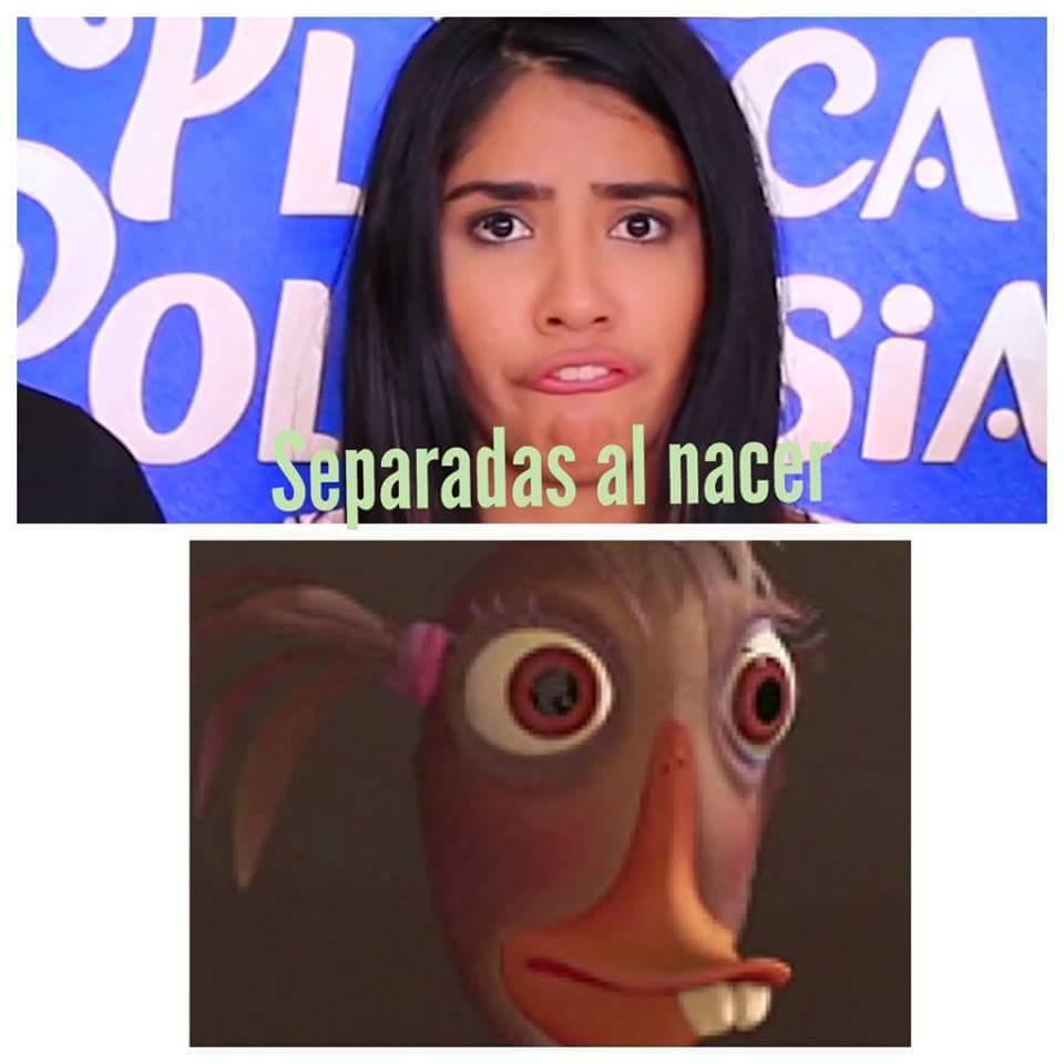 Iguales !! - meme