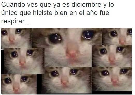 José - meme