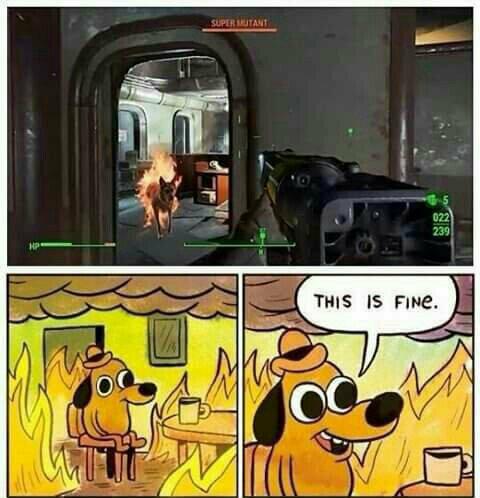 :gv - meme