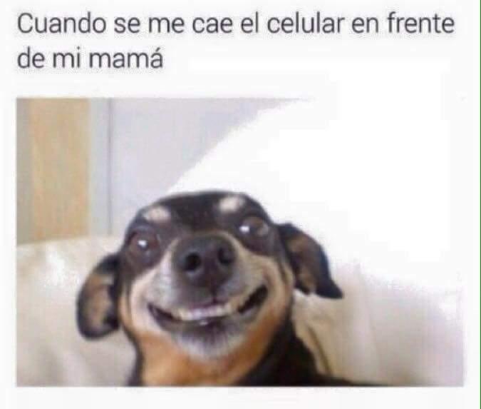 Mami te amo  - meme