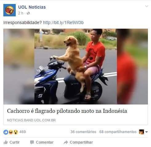 Mais um dia comum na indonesia - meme