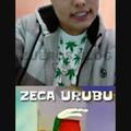 Zeca urubu's