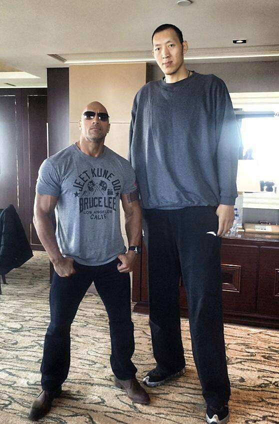 Looks like The Rock just turned to The Pebble - meme