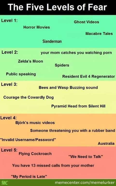 Level fears - meme