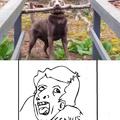 Genius :O