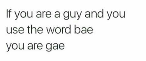 Gae - meme
