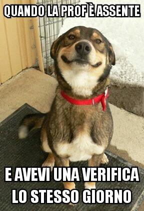 ;) - meme