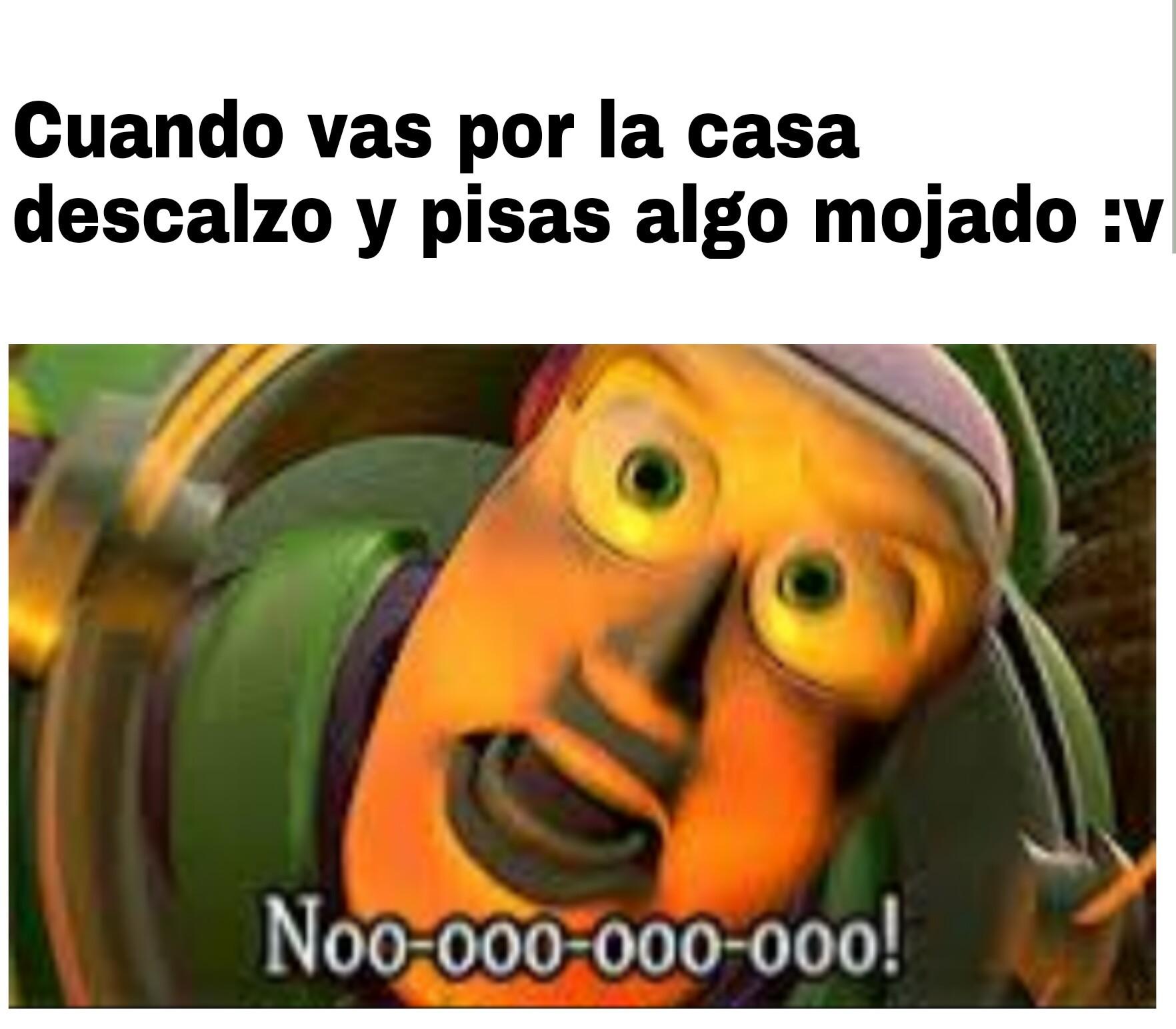 Nooooo!! - meme