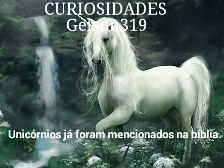 Curiosidades - meme