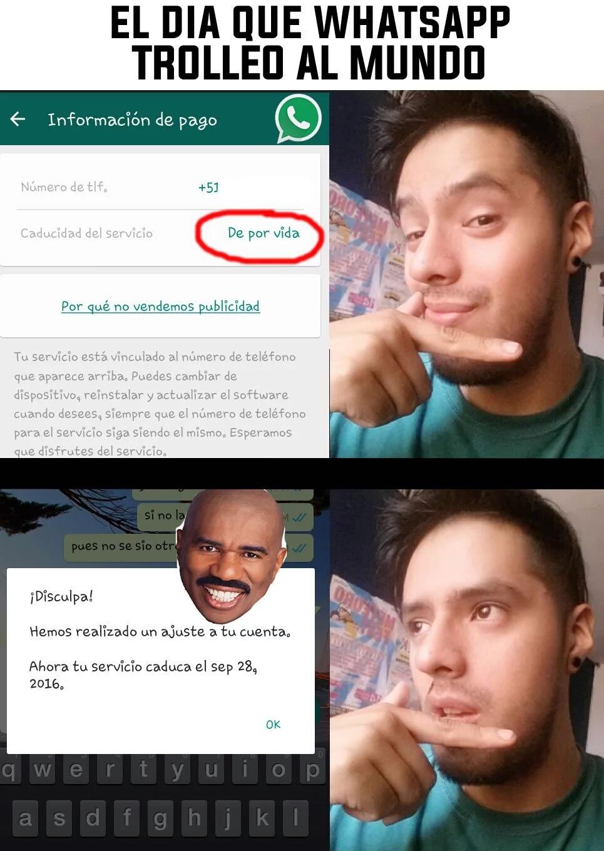 whatsapp - meme