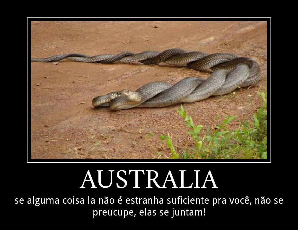 Australia pessoal ! - meme