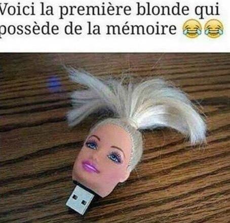 USBarbie - meme