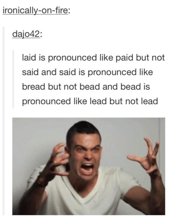 best of tumblr - meme