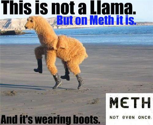 Meth. Not even once. - meme