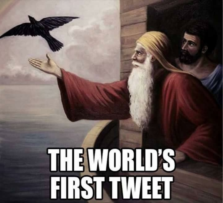 Noah sending out a dove and very true too - meme