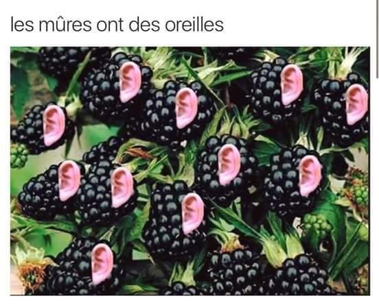 Les murs - meme