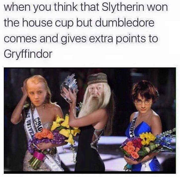 10 Points to Griffindor - meme
