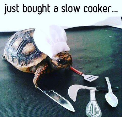 Cooks so good - meme