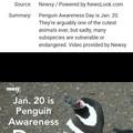 Happy Penguin Awareness Day !!