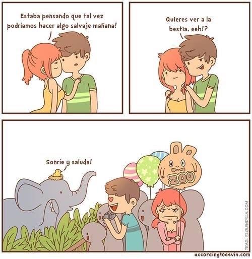 zoológico - meme