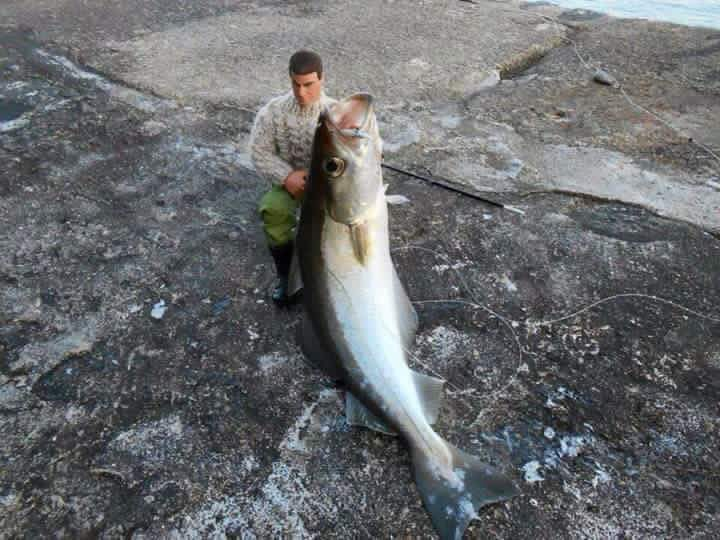 When fishing, always bring an action figure - meme