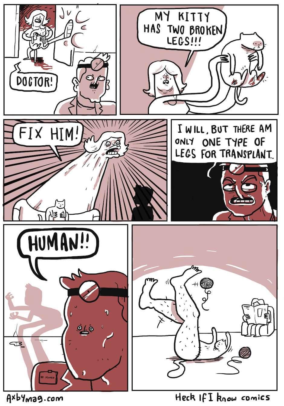 those unshaven human legs - meme