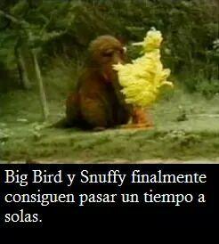 Big Bird es genial. - meme
