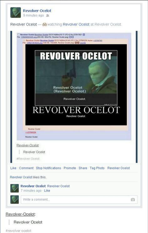 Revolver Ocelot - meme