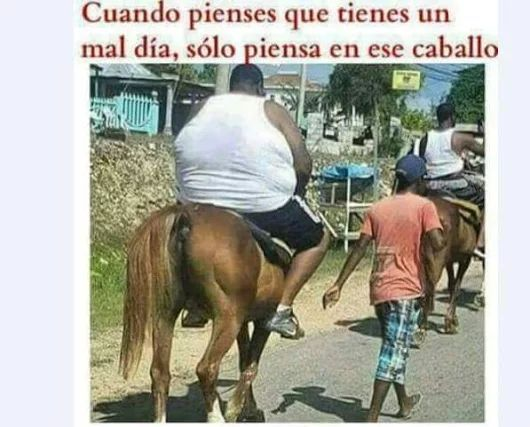 Ese caballo es un loquillo - meme