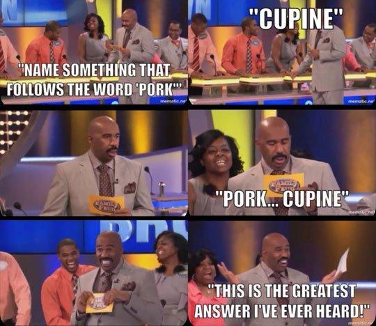 Porkcupine - meme