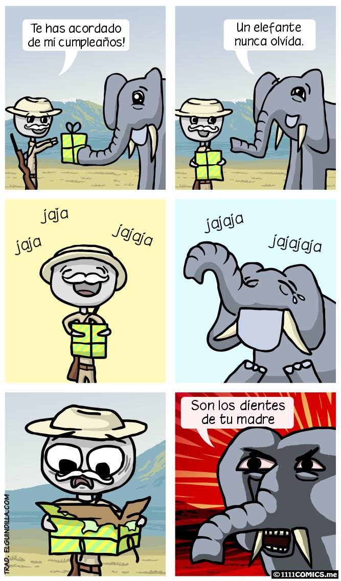 El elefante no olvida - meme