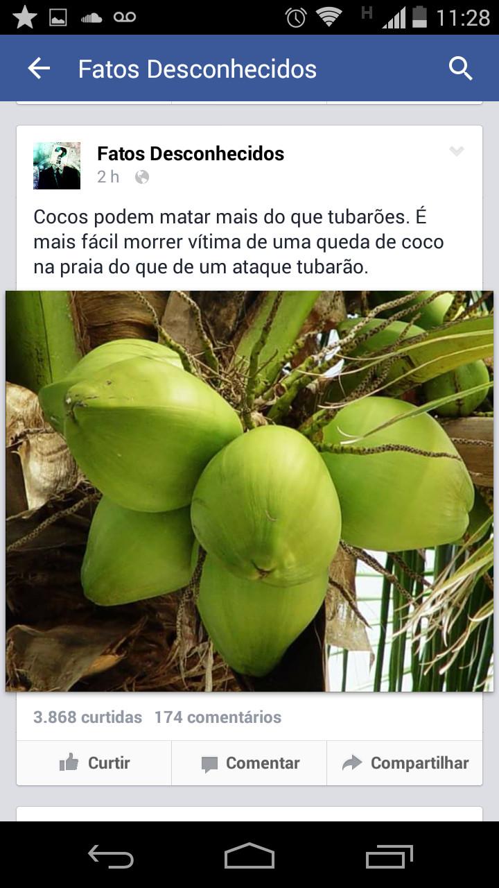Fujam dos cocos ! - meme