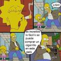 Homero y sus problemas con las drogas